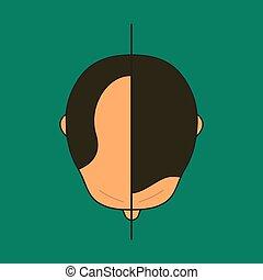 sebészet, hím, alopecia, műanyag
