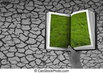 sec, concept, passé, toqué, herbe, terre
