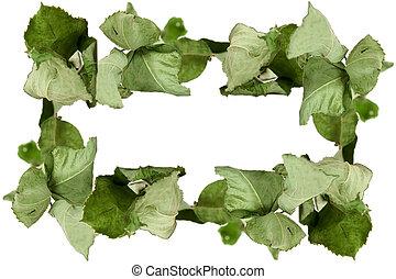 sec, conceptuel, feuilles, cadre