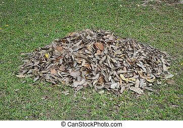 sec, feuilles, tas