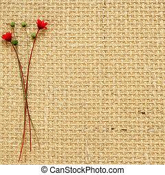 sec, fleurs