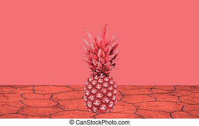 sec, la terre, rouges, ananas