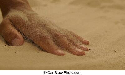 sec, sable, femme, mer, main