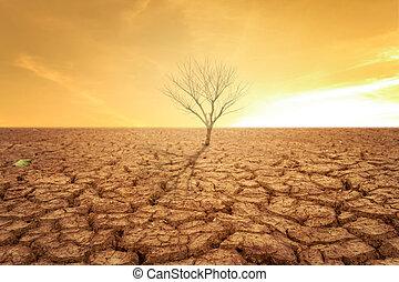 sec, terre, arbre, temps chaud, sécheresse