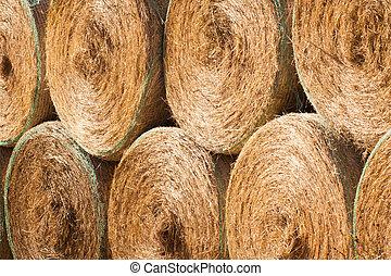 secar, redondo, feno, ao ar livre, fardos, pilha