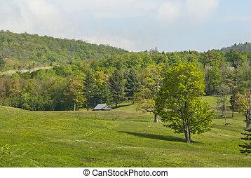 Farm near Wilmington Vermont
