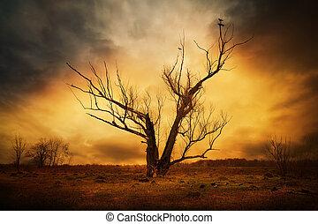 seco, árbol, ramas, Cuervos