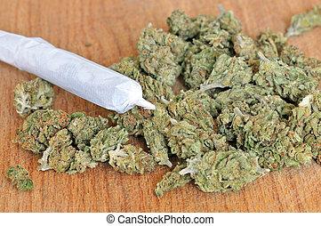 seco, brotes,  marijuana, coyuntura