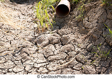 seco, canal, sin, agua, en, el, verano