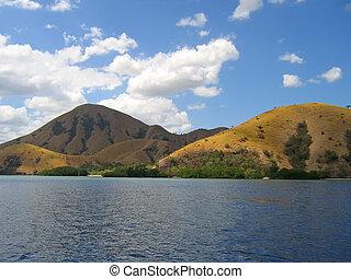 seco, colinas, indonesia, amarillo, archipiélago, komodo