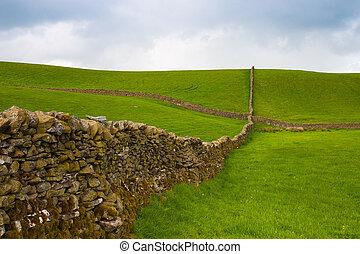 seco, piedras, pared, yorkshire, pasto, valles, típico
