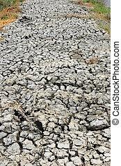 seco, tierra, en, árido, áreas