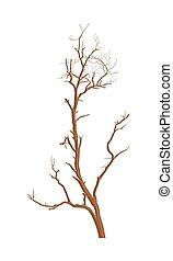 secos, árvore, vetorial, desenho