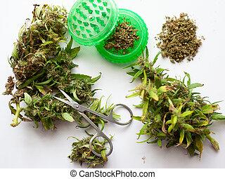 secos, brotos, moedor, marijuana, fundo, fresco, tesouras, branca, aparando