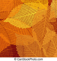 secos, folhas, eps, outono, 8, template.