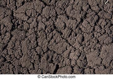 secos, lama, terras