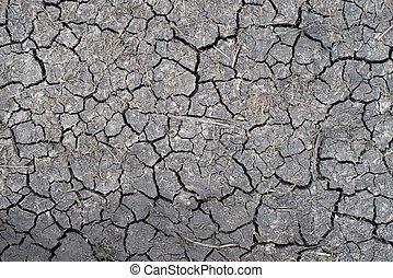 secos, padrão, ground.