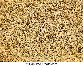secos, palha, fundo, ou, textura