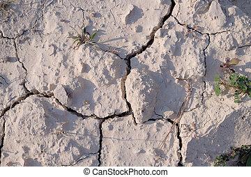secos, solo, textura, -3, terra, seca, chão rachado