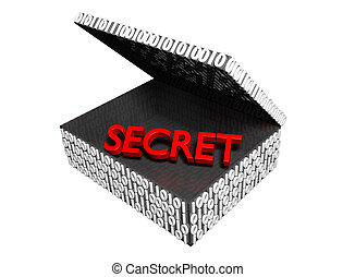 Secret in a Numeric Box