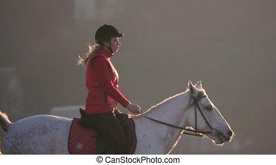 secteur, cheval, lent, autour de, résidentiel, houses., mouvement, champ, équitation, travers