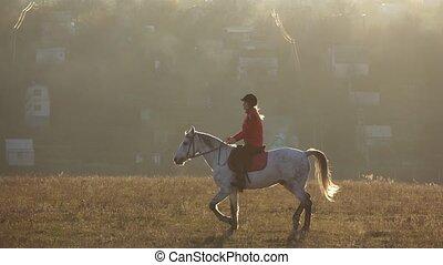 secteur, lent, privé, cavalier, mouvement, maisons, équitation, horse.