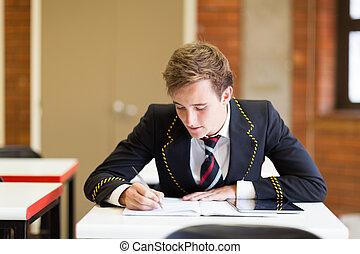 secundair onderwijs, jongen, studerend , in, klaslokaal