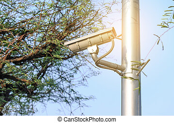 Security camera for monitoring events in urban garden.