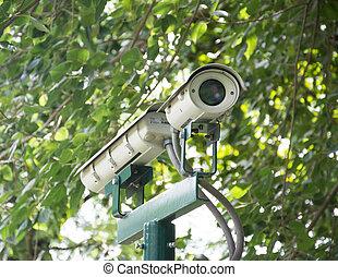 Security Camera in the Garden, CCTV