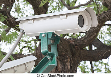 Security CCTV camera in the park.