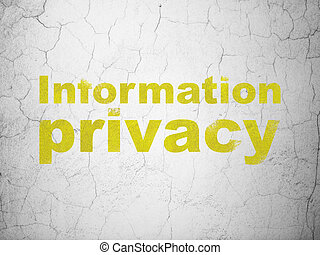 Security concept: Information Privacy on wall background