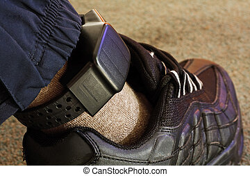 security electronic tagging - Security electronic tag on a...