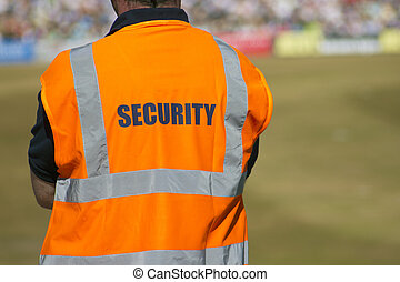 Security - Marshall at sports event looks over proceedings