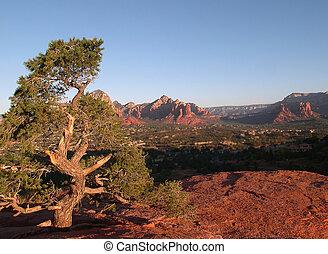 Sedona Desert Scene - outlook on Sedona Arizona