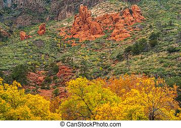 1144 best Desert scenes images on Pinterest | Landscapes ...  |Sedona Fall Scene