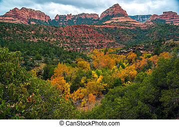 Sedona - Arizona. in 2019 | Sedona arizona, Arizona usa ...  |Sedona Fall Scene