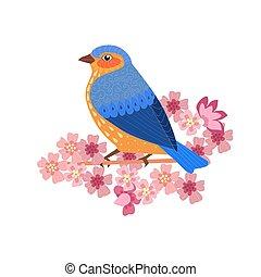 seduta, fiore, capriccio, disegno uccello, sakura, ramo, tuo