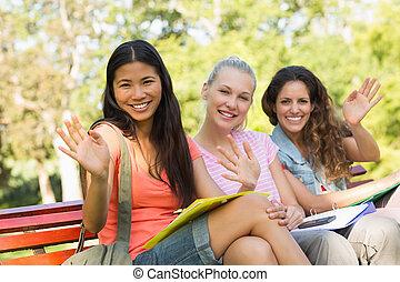 seduta, panca, università, femmina, amici, università
