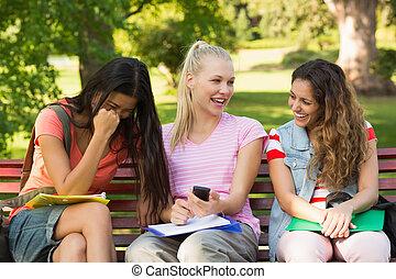 seduta, panca, università, femmina, amici, università, felice