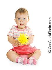 seduta, piccolo, bambino, fiore giallo