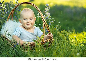 seduta, sliders, bambino, cesto, piccolo, sorridente