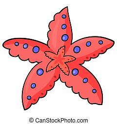 see starfish -01