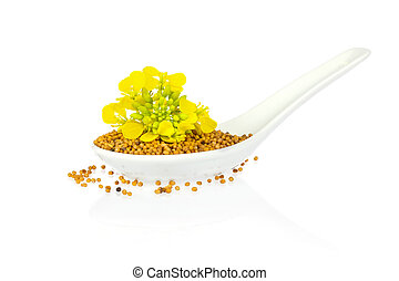 Seed and flower of mustard in porcelain spoon isolated on white background