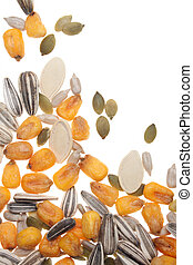 Seed and grain - Various seed and grain isolated on white...