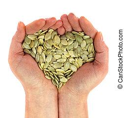 Seed of pumpkin in palm looks like heart