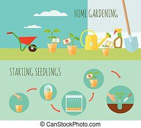 Seedling Horizontal Banners Set