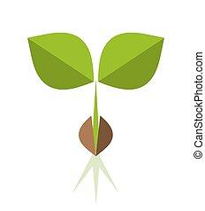 Seedling - Plant seedling. Vector illustration