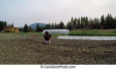 seedlings, 4k, femme, ferme