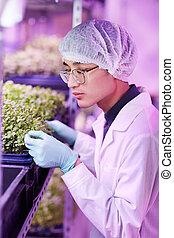 seedlings, botaniste, fonctionnement