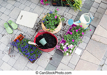Seedlings, potting soil and flowerpots on a patio